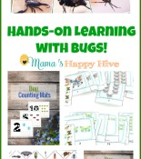 Hands-On Learning with Bugs