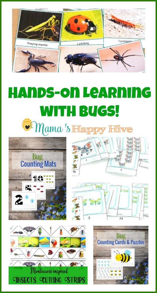 This hands-on learning with bugs collection includes 3-part cards for language development, bug counting mats, beautiful butterfly skip counting printables, cutting strips, bug counting puzzles, and a whole unit on honey bees! - www.mamashappyhive.com