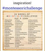 Montessori Challenge – Month One