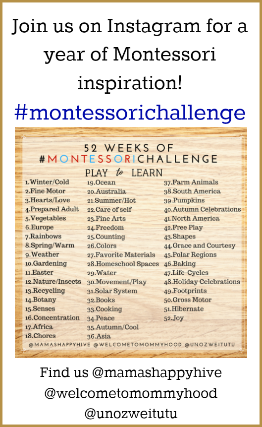 Join the Montessori Challenge - Month One, for encouragement, support, ideas, and general Montessori inspiration with weekly Montessori themes on Instagram! Plus, monthly homeschool activities are included on the blog! - www.mamashappyhive.com
