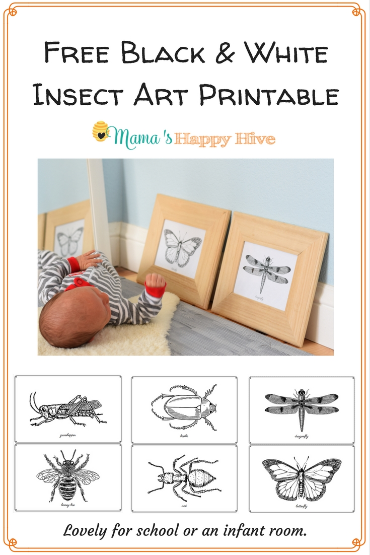 Great tips for setting up a beautiful Montessori inspired homeschool space that includes a preschool supply list. Also, a free insect art printable! - www.mamashappyhive.com