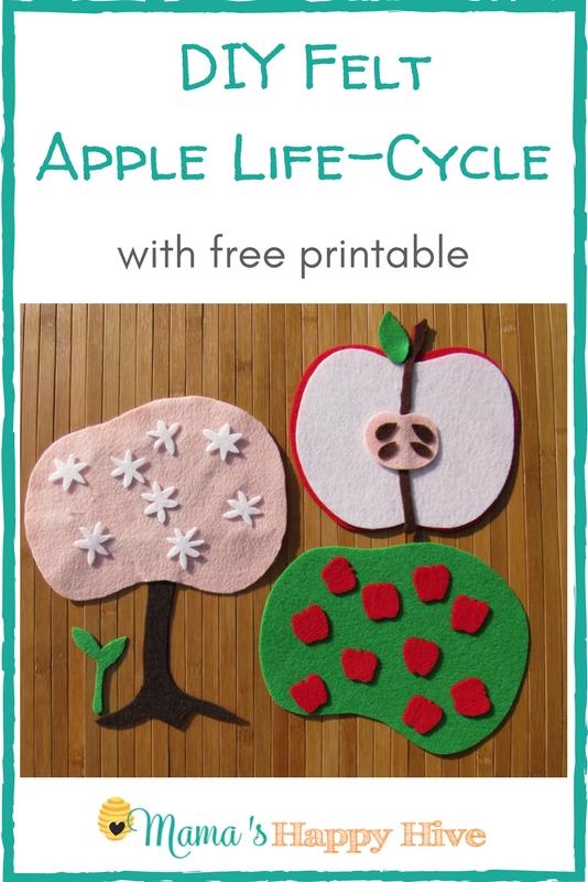 DIY Felt Apple Life Cycle with Printable