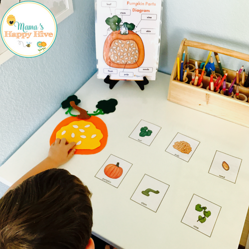 thanks for visiting and i hope you enjoy hours of fun with this diy felt pumpkin  parts set and life-cycle cards! enjoy!