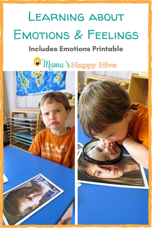 Learning about Emotions and Feelings