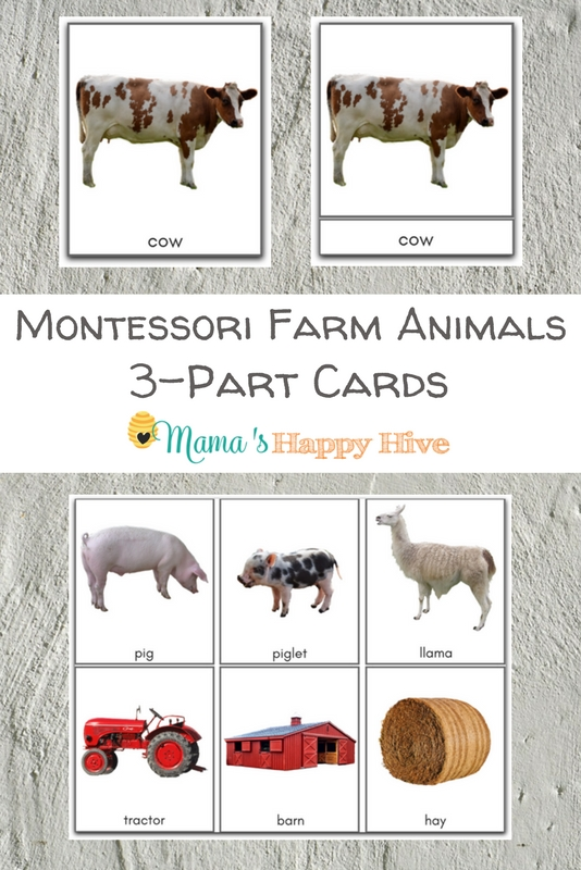 Montessori Farm Life 3-Part Cards