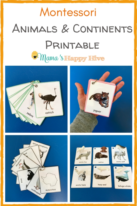 Included are several fun hands-on activities for learning all about Montessori animals and continents. Plus, an animal & continent printable bundle! - www.mamashappyhive.com