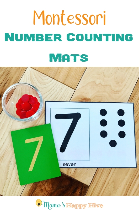 Montessori Counting Activities
